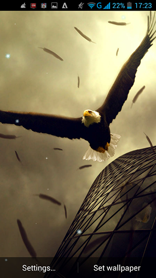 Download Eagle - livewallpaper for Android. Eagle apk - free download.
