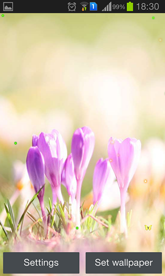 Screenshots of the Early spring: Nature for Android tablet, phone.