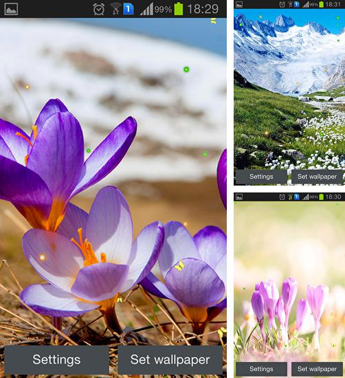 In addition to live wallpaper Spring flowers for Android phones and tablets, you can also download Early spring: Nature for free.