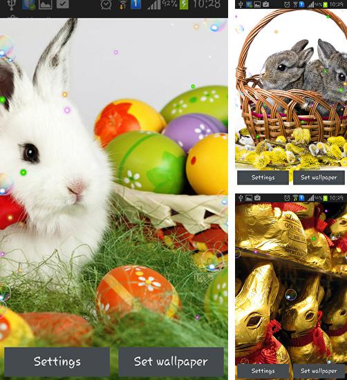 In addition to live wallpaper Spring cat for Android phones and tablets, you can also download Easter bunnies 2015 for free.