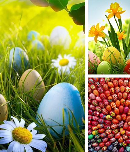 Download live wallpaper Easter by HQ Awesome Live Wallpaper for Android. Get full version of Android apk livewallpaper Easter by HQ Awesome Live Wallpaper for tablet and phone.