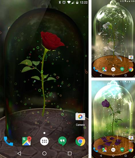 In addition to live wallpaper Aquarium by Best Live Wallpapers Free for Android phones and tablets, you can also download Enchanted Rose for free.