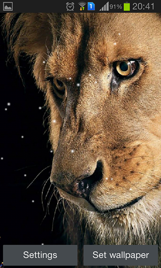 Download livewallpaper Eyes lion for Android. Get full version of Android apk livewallpaper Eyes lion for tablet and phone.