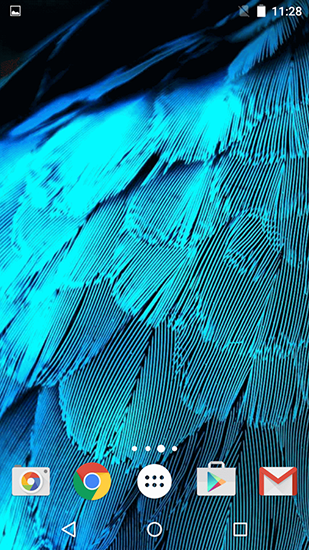 Download livewallpaper Feathers for Android. Get full version of Android apk livewallpaper Feathers for tablet and phone.