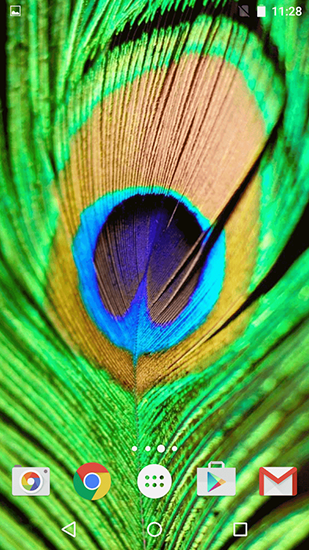 Download Feathers - livewallpaper for Android. Feathers apk - free download.