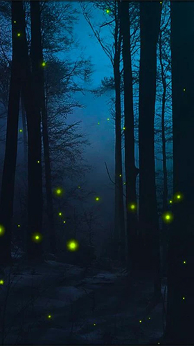 Fireflies 3d By Live Wallpaper Hd 3d Fur Android Kostenlos