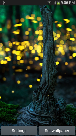 Download Fireflies by Top live wallpapers hq - livewallpaper for Android. Fireflies by Top live wallpapers hq apk - free download.