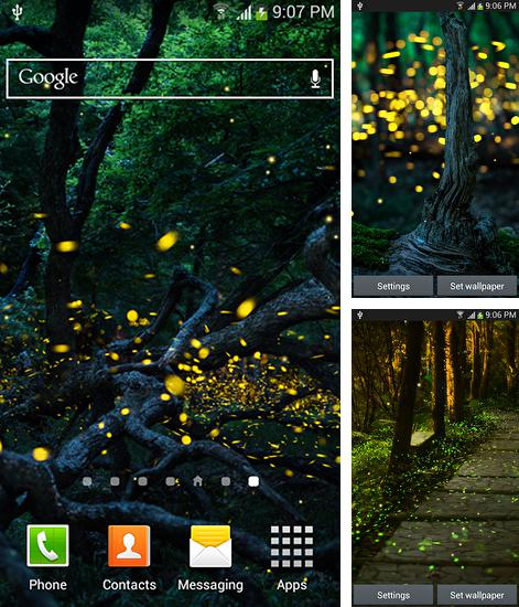 In addition to live wallpaper Cute dragon for Android phones and tablets, you can also download Fireflies by Top live wallpapers hq for free.