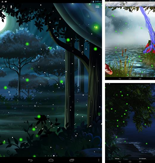 Firefly Forest Live Wallpaper For Android Firefly Forest Free