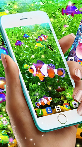 Download livewallpaper Fish for Android. Get full version of Android apk livewallpaper Fish for tablet and phone.