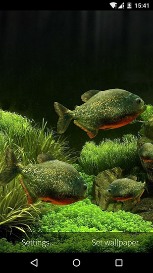 Screenshots of the Fish aquarium 3D for Android tablet, phone.