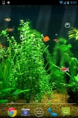 Fishbowl - download free live wallpapers for Android. Fishbowl full Android apk version for tablets and phones.