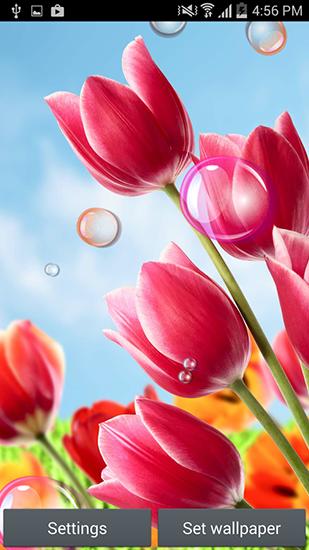 39e17e6a3c8 Flowers 2015 на Андроид скачать бесплатно. Живые обои для Android.