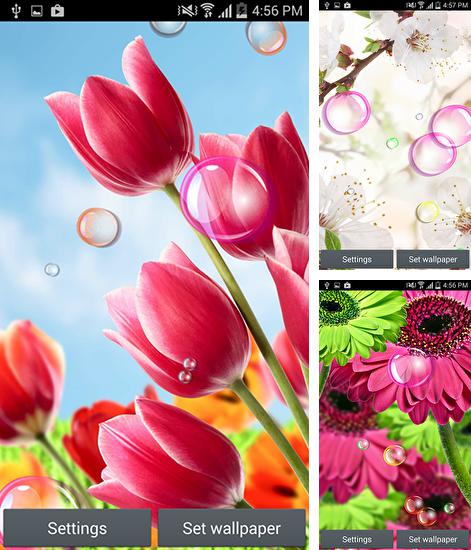 In addition to live wallpaper Marine miracle for Android phones and tablets, you can also download Flowers 2015 for free.