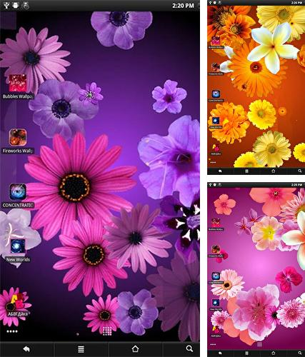Baixe o papeis de parede animados Flowers by PanSoft para Android gratuitamente. Obtenha a versao completa do aplicativo apk para Android Flowers by PanSoft para tablet e celular.