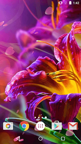Геймплей Flowers by Phoenix Live Wallpapers для Android телефона.
