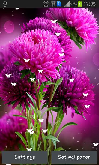 Descargar Flowers By Stechsolutions Para Android Gratis El Fondo De