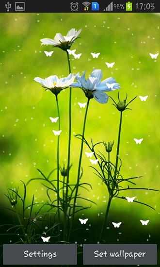 Fond D Ecran De Fleurs Gratuit Pour Android Fastgrowhorin Gq
