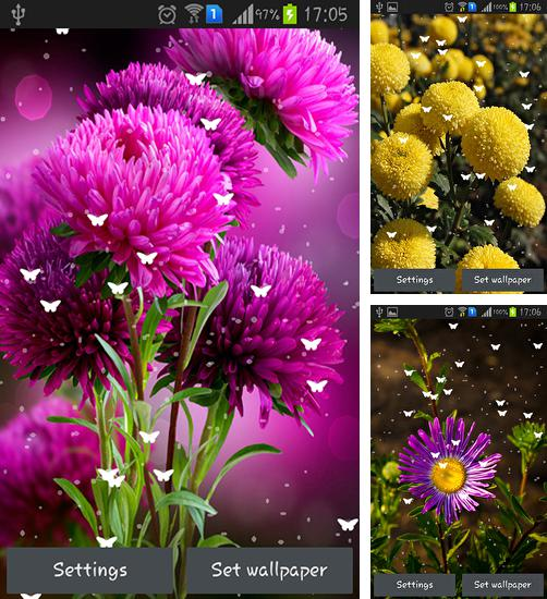 In addition to live wallpaper Lavender by orchid for Android phones and tablets, you can also download Flowers by Stechsolutions for free.