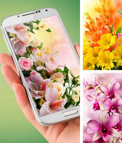 Flowers by Ultimate Live Wallpapers PRO