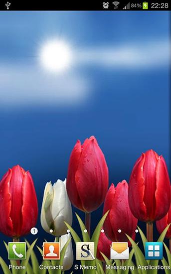 flowers hd pour android t l charger gratuitement fond d 39 cran anim fleurs hd sous android. Black Bedroom Furniture Sets. Home Design Ideas
