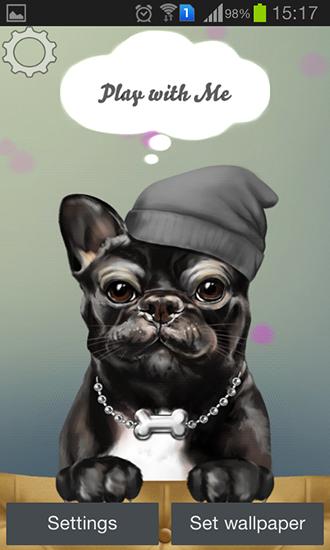 French Bulldog Pour Android A Telecharger Gratuitement Fond D Ecran Anime Bouledogue Francais Sous Android