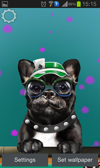 French Bulldog Live Wallpaper For Android French Bulldog Free