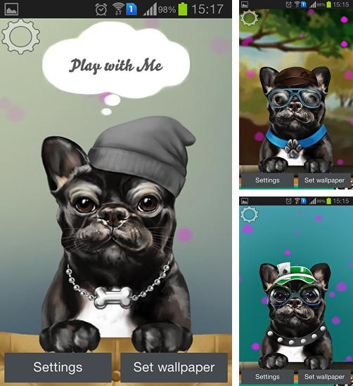 In addition to live wallpaper Fireplace for Android phones and tablets, you can also download French bulldog for free.