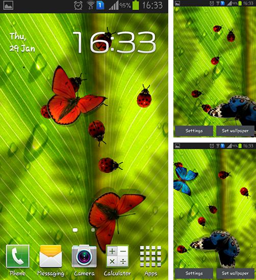 In addition to live wallpaper Snowman by Dream World HD Live Wallpapers for Android phones and tablets, you can also download Friendly bugs for free.