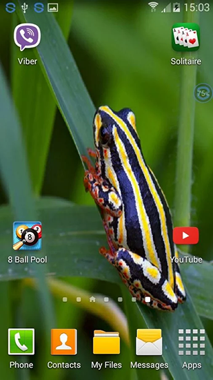Download Frogs: shake and change - livewallpaper for Android. Frogs: shake and change apk - free download.