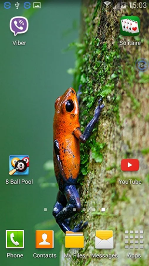 Screenshots of the Frogs: shake and change for Android tablet, phone.