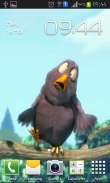 Funny bird - download free live wallpapers for Android. Funny bird full Android apk version for tablets and phones.