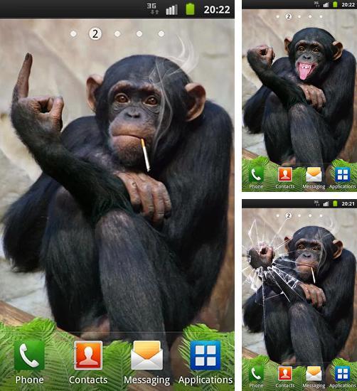 тема на телефон нокиа обезьяна