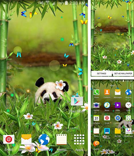 In addition to live wallpaper Bubbles for Android phones and tablets, you can also download Funny panda for free.
