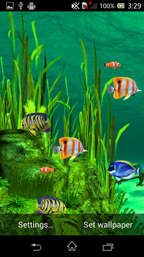 Screenshots of the Galaxy aquarium for Android tablet, phone.