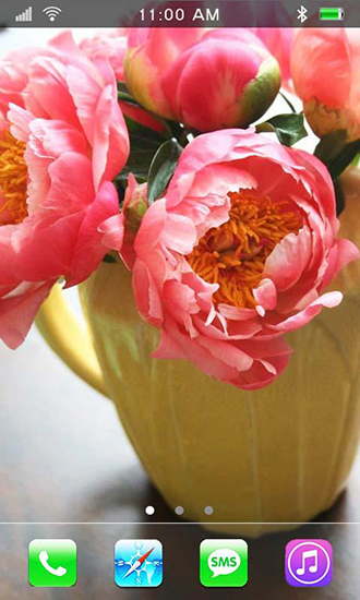 Download Garden peonies - livewallpaper for Android. Garden peonies apk - free download.