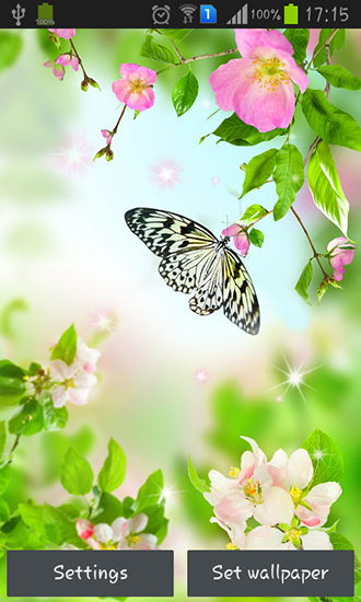 Gentle Flowers Live Wallpaper For Android Free Download Tablet And Phone