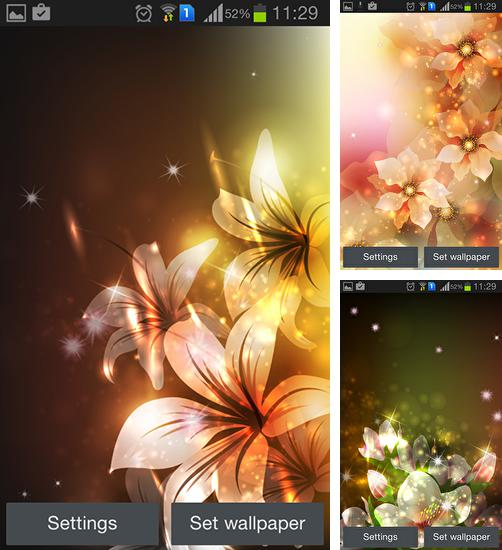In addition to live wallpaper Flower 360 3D for Android phones and tablets, you can also download Glowing flowers by Creative factory wallpapers for free.