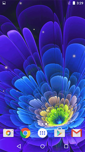 Glowing flowers by Free Wallpapers and Backgrounds