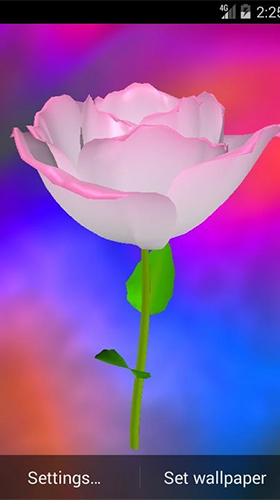Golden Rose Live Wallpaper For Android Golden Rose Free Download For Tablet And Phone