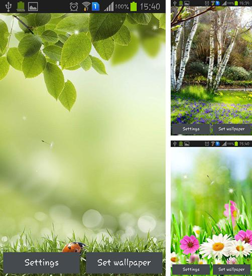 In addition to live wallpaper Smiley for Android phones and tablets, you can also download Green spring for free.