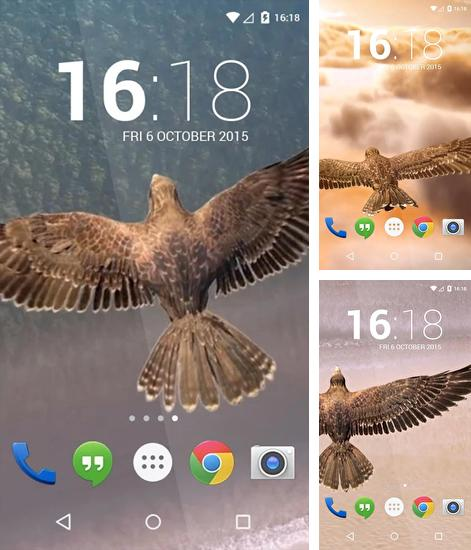 In addition to live wallpaper Butterfly locksreen for Android phones and tablets, you can also download Heavenly Bird for free.