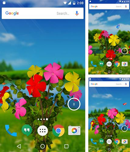 Download live wallpaper Hibiscus 3D for Android. Get full version of Android apk livewallpaper Hibiscus 3D for tablet and phone.