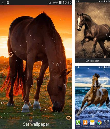 Horses by Dream World HD Live Wallpapers