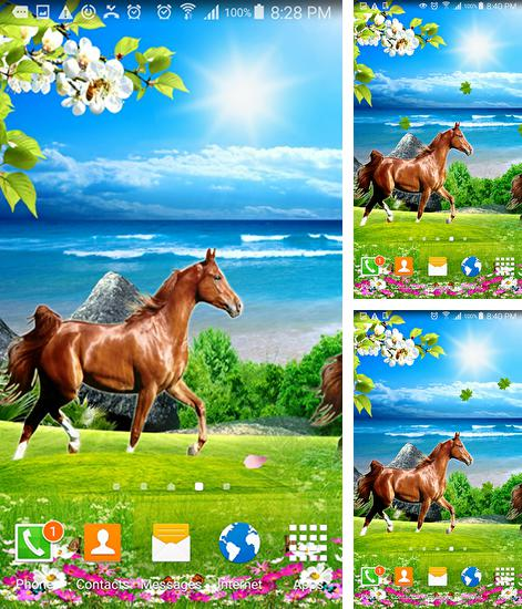 Android Interactive Live Wallpapers Download Free Interactive