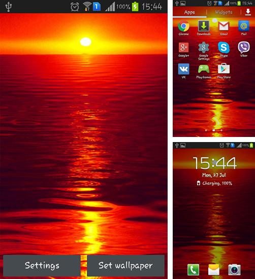 In addition to live wallpaper Chickens for Android phones and tablets, you can also download Hot sunset for free.