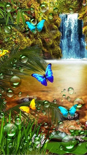 waterfall butterfly live wallpaper for android
