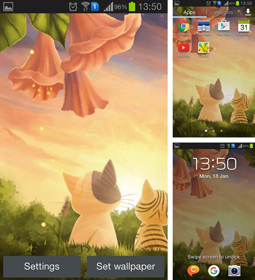 In addition to live wallpaper Meteor shower by Best Live Background for Android phones and tablets, you can also download Kitten: Sunset for free.