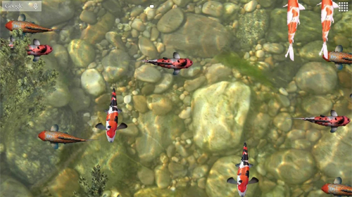 Screenshots of the Koi fish 3D for Android tablet, phone.