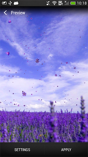 Download livewallpaper Lavender for Android. Get full version of Android apk livewallpaper Lavender for tablet and phone.